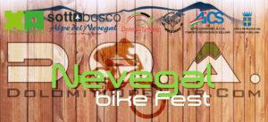 banner web1
